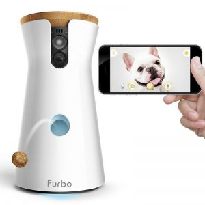 Camera furbo chien